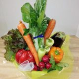 Top of the Line Vegie Basket