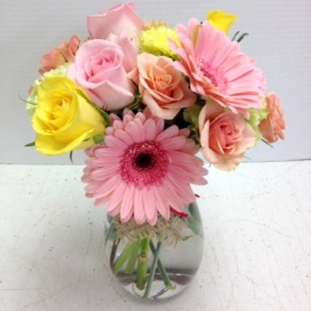 Soft Gerbera Daisies and Spray Roses
