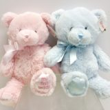 Pink and Blue Teddy Bears