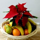 poinsettia-and-fresh-fruit