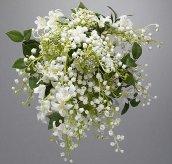 Kate's lily of the valley
