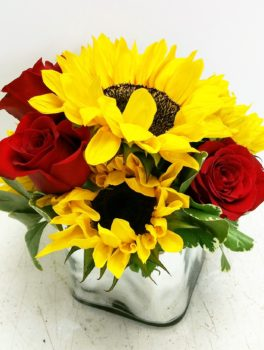 sunflower cube with roses